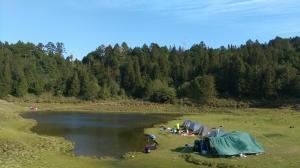 加羅湖散策