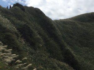 2018草山