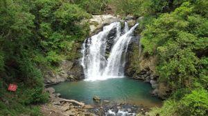 【新聞】墾丁、雙流國家森林遊樂區及林後四林平地森林園區自7月29日起休園