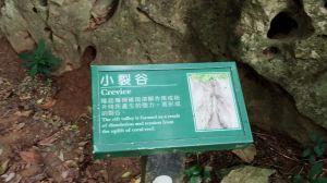 社頂自然公園步道
