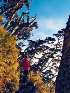 過年初3初4爬北大武山