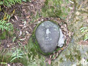 仙跡岩一日遊