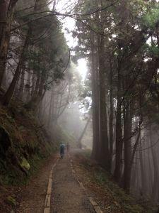 20180401-阿里山特富野古道