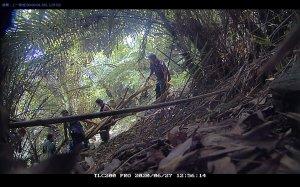【新聞】守護山林全年無休 護管員科技蒐證山老鼠法辦