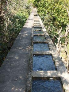 知高圳步道(前段)