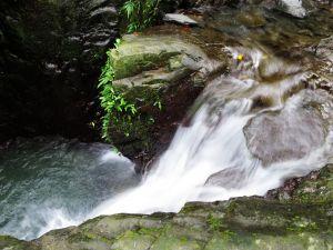 【宜蘭礁溪】清涼一夏:林美石磐步道