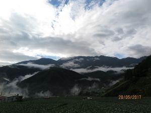 南山村及福壽山魯冰花海