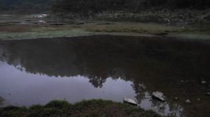 20180404~05松蘿湖