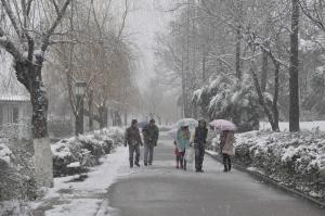 【說說山裡的故事】陽明山歷史上的下雪紀錄,以及台灣平地最低溫紀錄