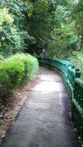 鶯歌登山步道