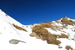 【山岳之美】合歡山積雪
