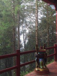 太平山檜木原始林步道