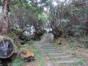 太平山望洋山步道