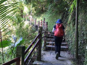 聖母登山步道上三角崙山