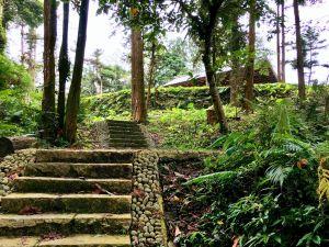 森林教室:龍美景觀步道