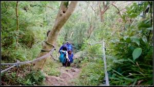 觀音山混走:牛港稜山、觀音山硬漢嶺、林梢