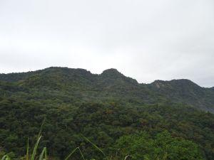 台灣小百岳第45座-南投國姓-大橫屏山之三角點