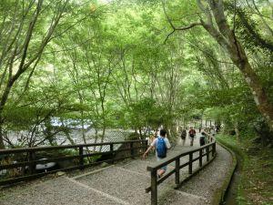 滿月圓森林步道