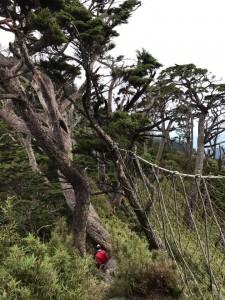北大武山之美景