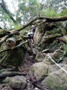 苗栗鹿場-加里山PART3