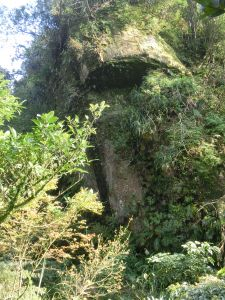 平湖森林步道.內平林山