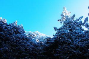 玉山  風雪後 , 另一番美景 !