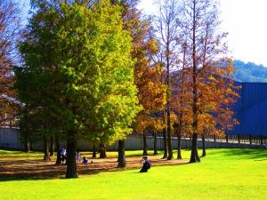 大湖公園、大溝溪步道、圓覺瀑布步道