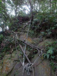 台灣小百岳第21座-桃園大溪金面山三角點