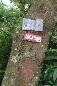 2016-9-5飛鳳山