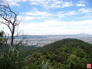 【新北市】土城桐花公園、天上山、甘露寺步道