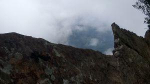 北得拉曼山登山步道神木區及內鳥嘴山連走