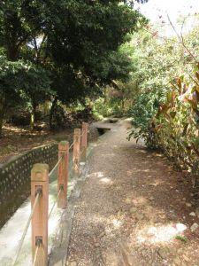 瑞井古井步道&瑞井社區
