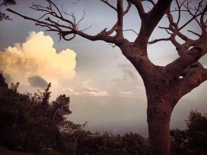 硬漢嶺登山步道 - 觀音山