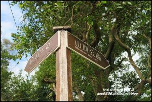 新北泰山。明志書院。頂泰山巖。崎頭步道。山頂步道。義學公園