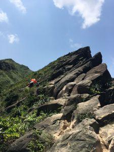 劍龍鋸齒稜半屏山茶壺山