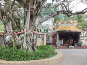 【台北市】清天宮步道、太子碑、向天池