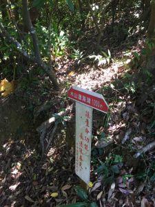 情人湖、大武崙砲台步道