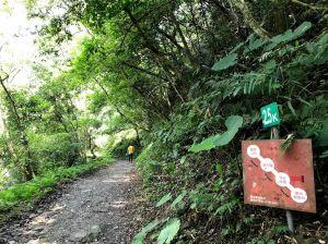 聖母山莊步道,近乎宗教式的自我追尋