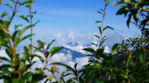 1061028~30 再訪北大武山