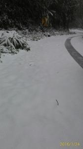 20160124新竹鵝公髻山下雪啦