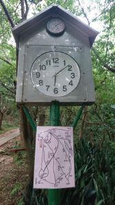 虎頭山公園步道