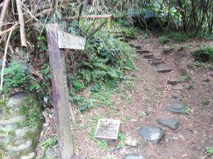 金面山親山步道 2017.04.14