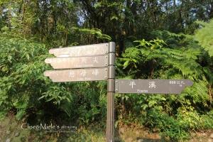 〝台灣 張家界〞【孝子山】