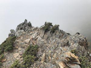 玉山後3峰+主峰