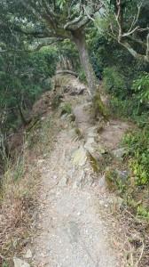 德文山步道(觀望山)