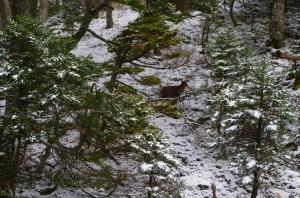 【山岳之美】冬之雪山