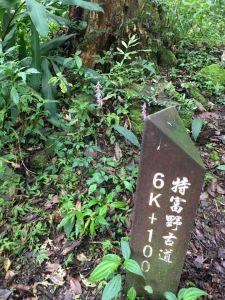特富野古道