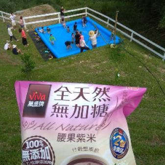 清涼一夏─腰果紫米堅果飲