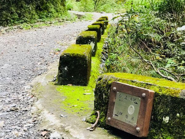 綠水合流輕旅行