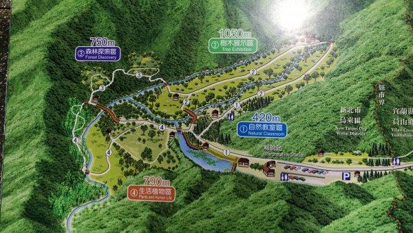 1071110福山植物園、望龍...